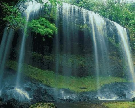 download wallpaper animasi alam gambar pemandangan air terjun bergerak