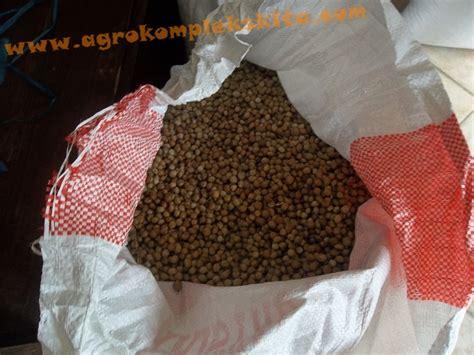 Pupuk Kalsium Tepung budidaya hanjeli agrokompleks mmc