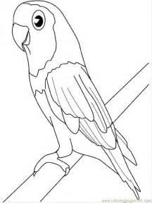 az color parrot color az dibujos para colorear