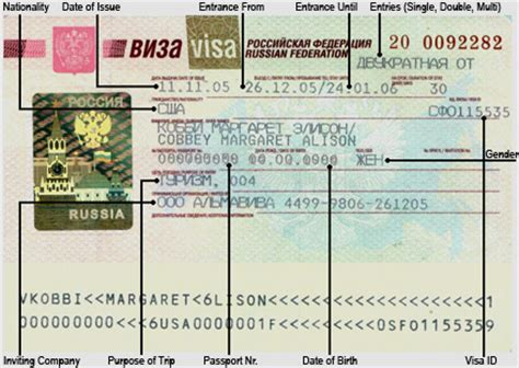 Sul Passport Dove Bening Clear And Dove Passport Cover visto russia visti russia visto russo