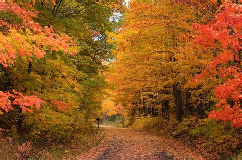 fall colors nikon s 2016 top spot for fall foliage is michigan usa