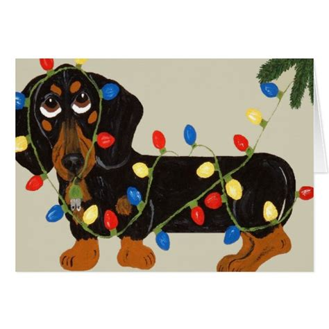 dachshund tangled in christmas lights blk tan card zazzle