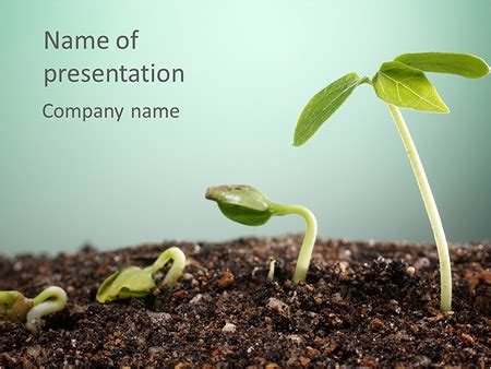 Plant In Soil Powerpoint Template Backgrounds Id 0000005059 Smiletemplates Com Plant Powerpoint Templates Free