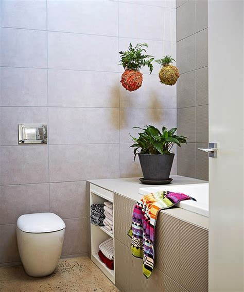 bathroom hanging plants best plants for bathrooms 20 indoor plants for the bathroom