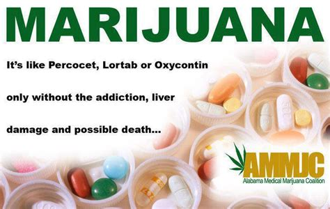 Can Cannibis Help Detox From Oxycontin by Quotes About The Damage Of An Addict Quotesgram