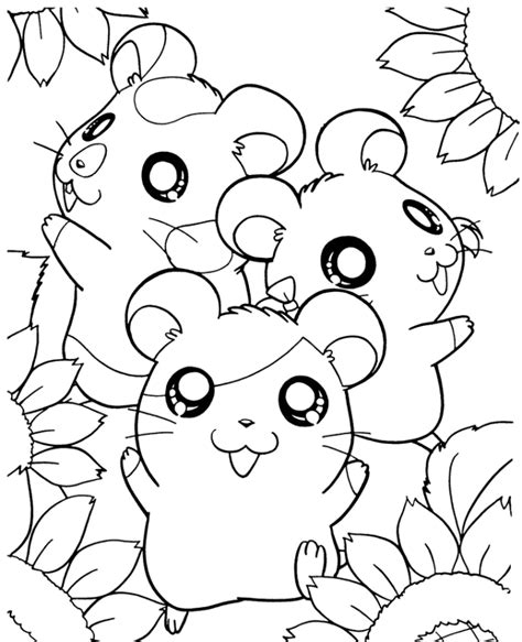 Coloring Page Hamster by Hamster Coloring Pages Az Coloring Pages