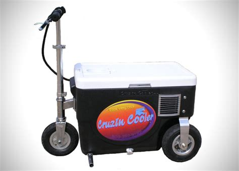 motorized scooter cruzin cooler motorized scooter hiconsumption