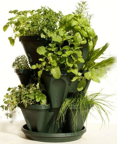 Mr Planter by Mr Stacky Stackable Planter Plant A Vertical Garden Easily Getdatgadget