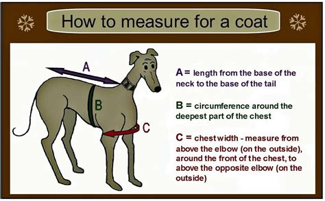 pattern greyhound coat greyhound coat pattern google search pinteres