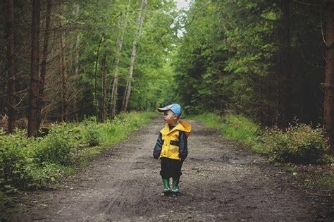 wandlen up light free photo child boy path walking kid free image on