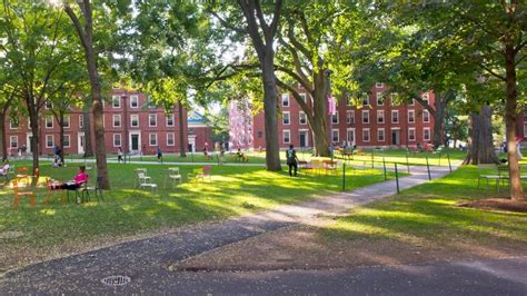 Harvard Pre Mba Courses by Studycor Study Courses And Scholarship Opportunities