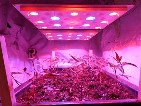 new led grow lights switchable for growth and flowering