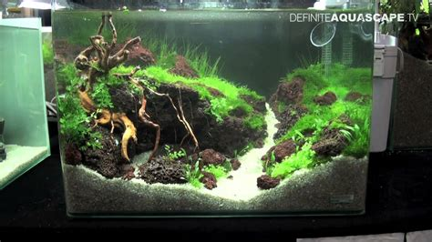 nano aquascapes aquascaping qualifyings for the art of the planted