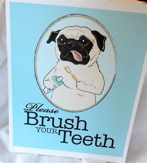 best brush for a pug 181 best images about dental creations on sarasota florida mouths