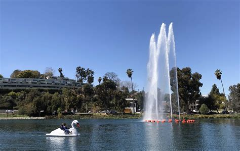 swan boats in echo park you can now ride swan boats at echo park lake