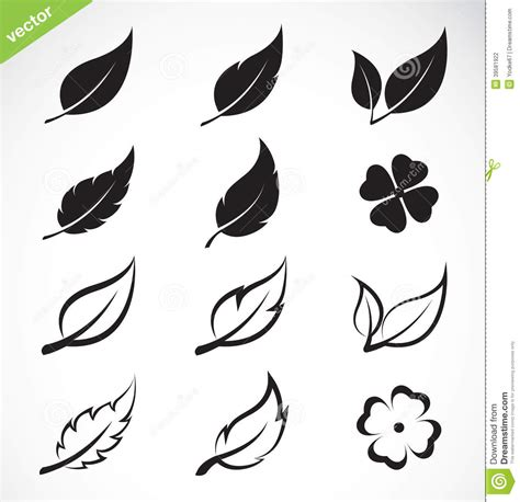 Vector Leaves Icon Set Stock Vector   Image: 39581922
