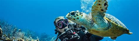 dive supply scuba diving equipment distributor and wholesaler