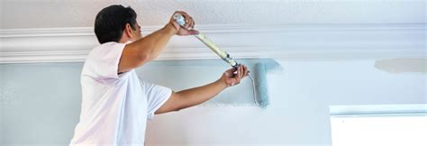 a painter certified and insured sarasota painters residential painting