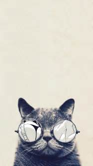 iphone 6 wallpaper cats collections