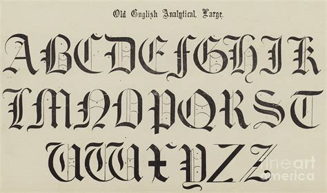 old english font drawing by english