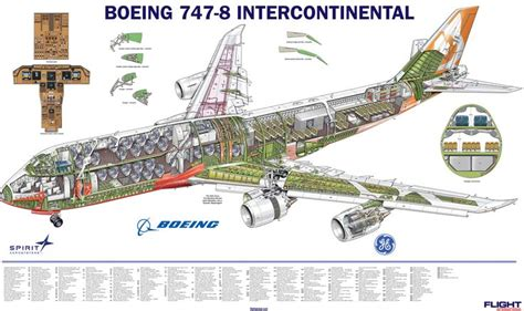 airplane cross section 747 8i cutaway from flight international nov 2012