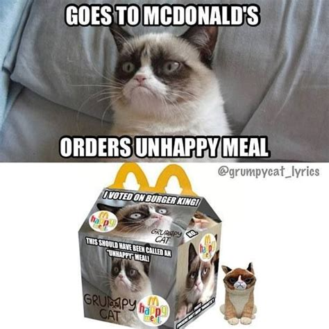 Unhappy Cat Meme - grumpy cat unhappy meal grumpy cat pinterest cats