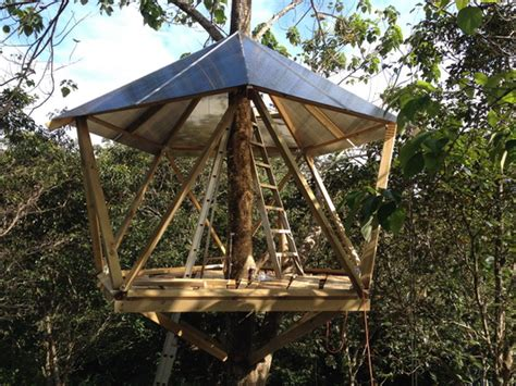 tree house design and construction image gallery treehouse construction