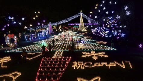 christmas illuminations at hiroshima botanical gardens