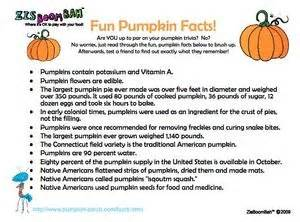 pumpkin facts 1000 images about fall crafts on