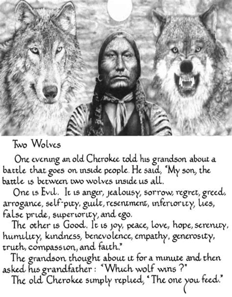 the last wolf the legend of all wolves books the story of the two wolves the sketchy scribe