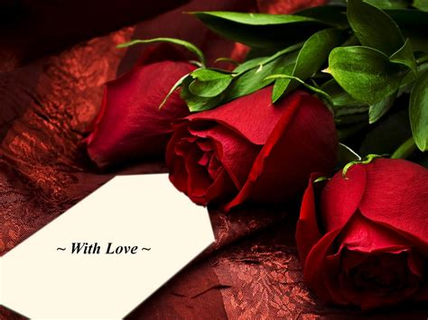images of love flowers flower quotes quotes home cute eyes