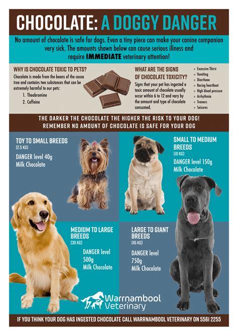 Chocolate Toxicity The Pet Wiki   chocolate toxicity wvc
