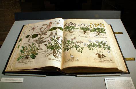 inspiration 將花園搬進書頁 basilius besler s florilegium polysh
