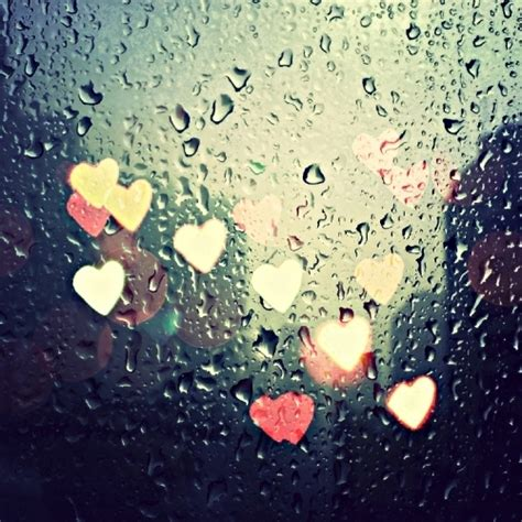 rainy days das de a passion for beautiful things pure