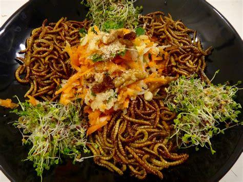 cuisine insectes comestibles test culinaire avec des vers de farine entomove project