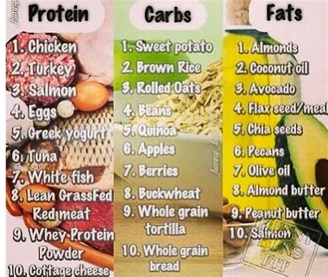 healthy fats carbs and protein list list of carbs and proteins benefits of binge