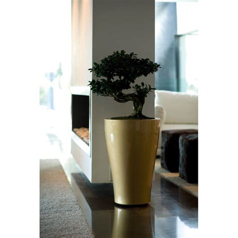 Vondom Planters by Vondom Curved Planters With Easy Watering System
