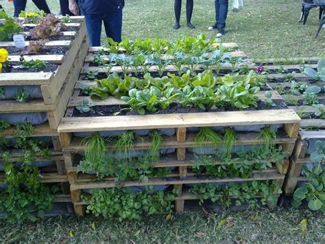 Pallet Gardening Ideas 25 Ways Of How To Use Pallets In Your Garden