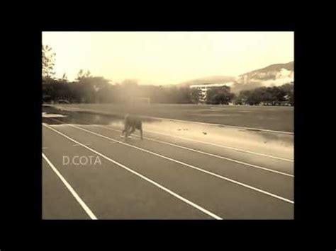 imagenes motivacionales de atletismo motivacion atletismo youtube