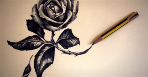 every rose has its thorn tattoo every has its thorns artsy fartsy