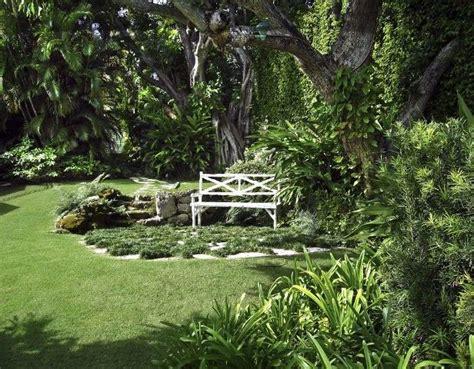 Alberi Da Piantare In Giardino alberi da piantare in giardino decorazioni per la casa