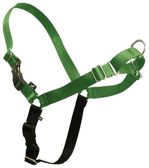 easy walk harness petsafe easy walk harness small green