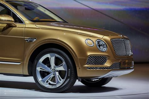 bentley bentayga 2016 2016 bentley bentayga makes world debut in gold at