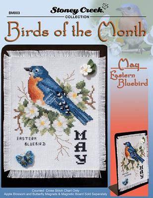 stoney creek birds of the month may eastern bluebird