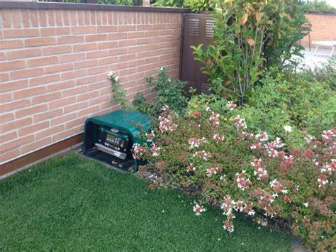 piante per giardini pensili terriccio giardini pensili