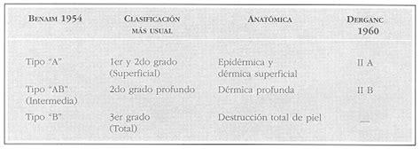 crticas y crnicas sobre 8494298526 opinin personal sobre una clasificacin uniforme para la profundidad de las quemaduras