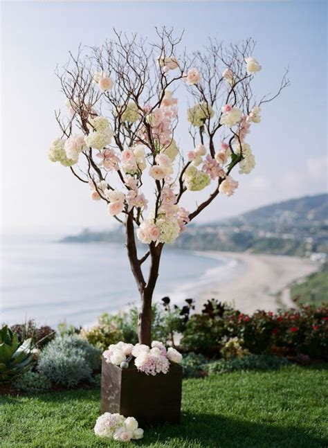 1000  images about Manzanita Branches Wedding Flowers on