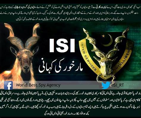 Story Isi 3 Limited pakistan up on quot story of markhor the isi can we get 5 000 shares retweets