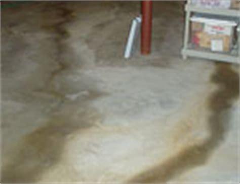 basement waterproofing edmonton basement repair fixing water leaks inbasements edmonton
