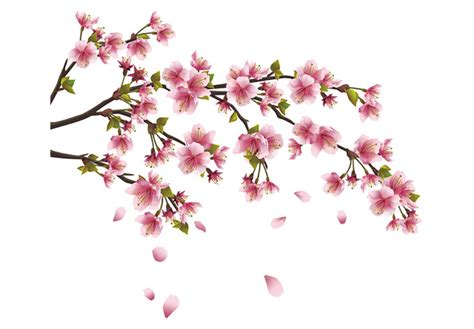 Cherry Blossom Branch Wall Decal Beautiful Vinyl Decoration Cherry Blossom Branch